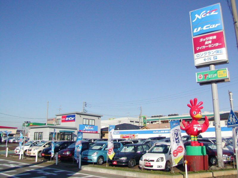 usedcar-dealer-s