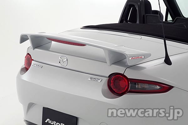 autoexe-rear-wing-1