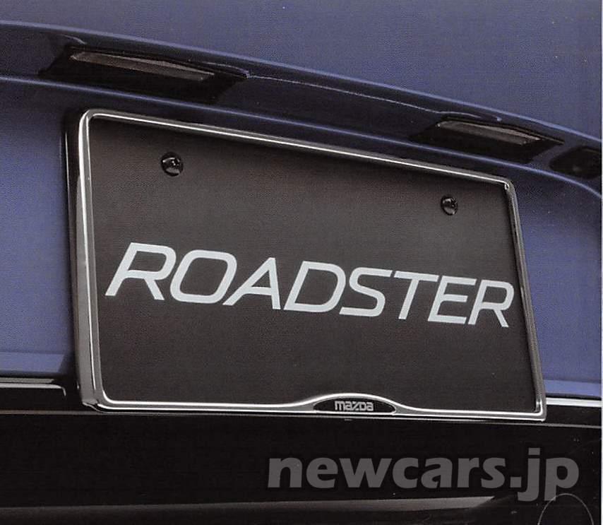number-plate-holder-1