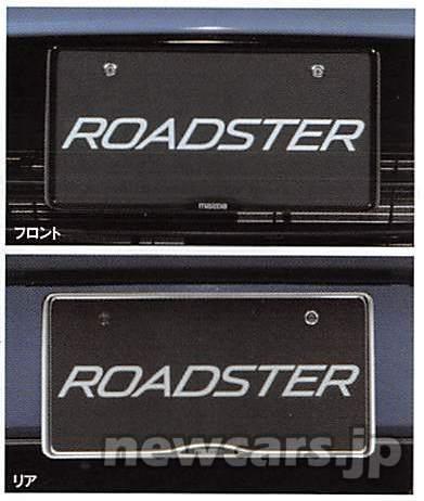 number-plate-holder-2