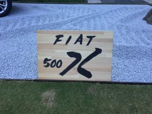 500X-plate